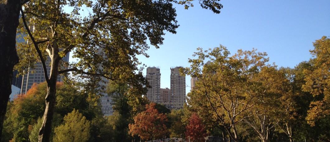 capa central park outono nova york e voce