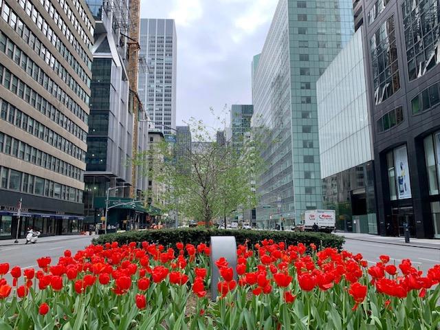 nova york em abril