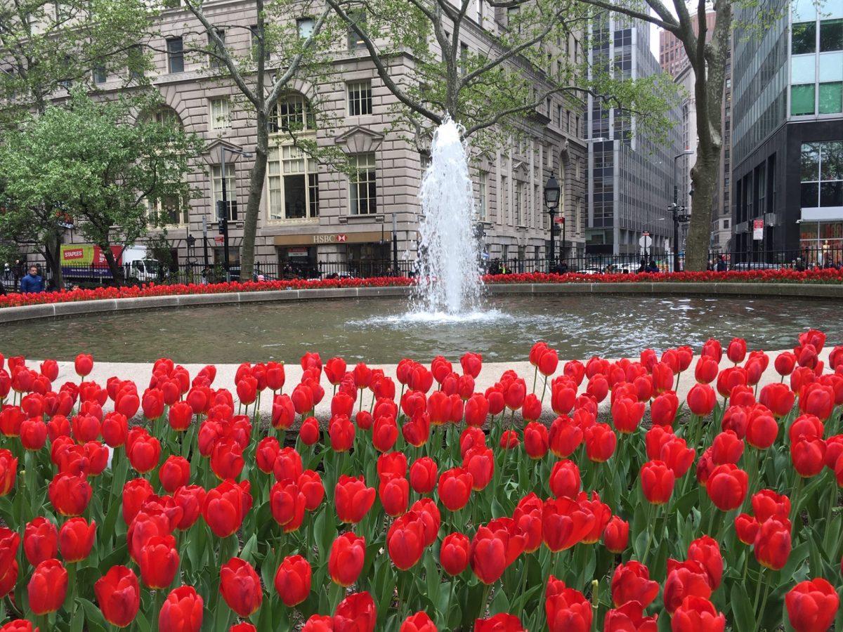 Temperatura em Nova York: Clima em Nova York Mês a Mês